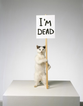 'I'm dead, David shrigley , 2010, taxidermy cat with wooden sign and acrylic paint